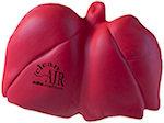 Lung Stress Balls